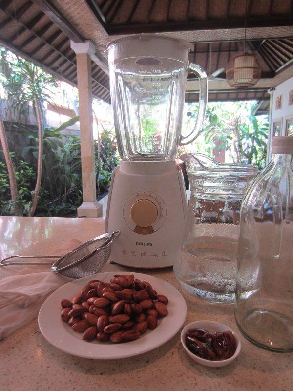 Radiance Central-Almond Milk Recipe