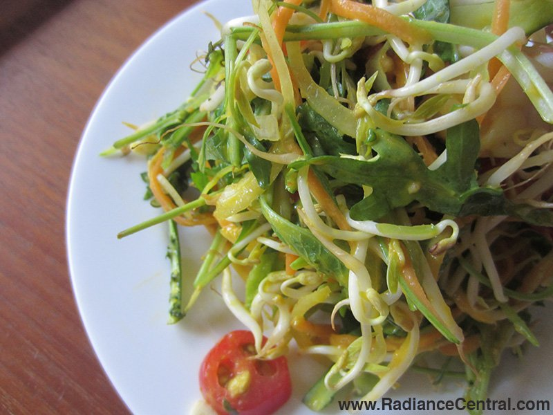 Asian Green Salad with Mango Dressing Recipe- www.RadianceCentral.com