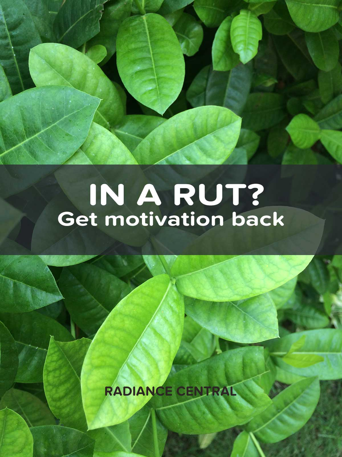 Getting motivation back is all about sparking your passion and enthusiasm. It's not about what you're trying to do but how excited you are about doing it. | www.radiancecentral.com
